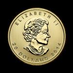 half-oz-canadian-gold-maple-leaf-coin-front