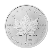 1-oz-canadian-silver-maple-leaf-coin-front